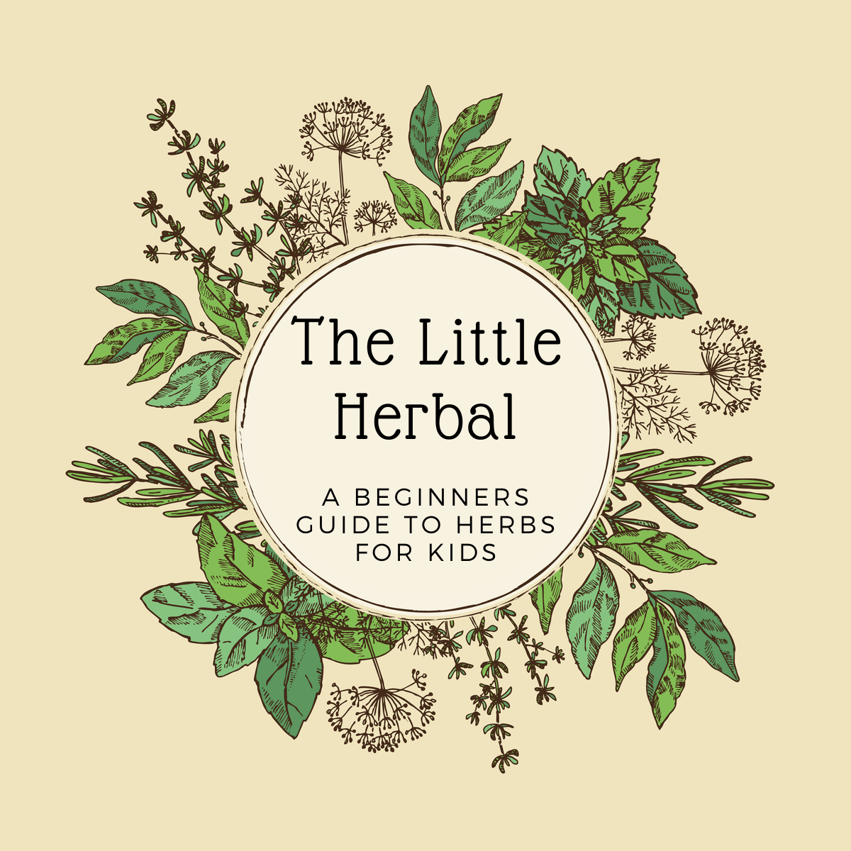 A Biginners Guide to Herbs For Kids